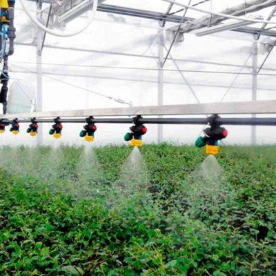 Acuerdo para divulgar e impulsar los estudios de los beneficios del ozono en los tratamientos en la agricultura